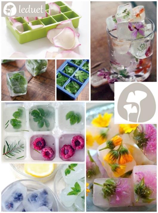 hielos de flores